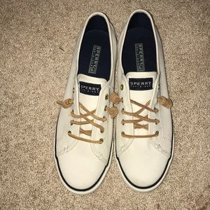 Sperry Seacoast Canvas Sneaker NWOT
